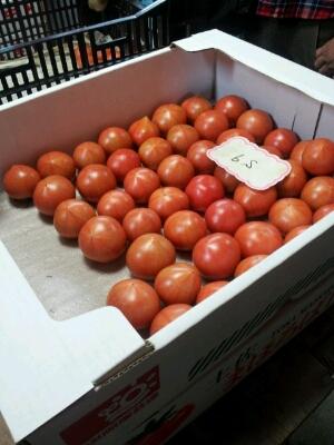 高知県まで『フルーツトマト』・・・視察へ行ってきました♪_b0077531_14113275.jpg