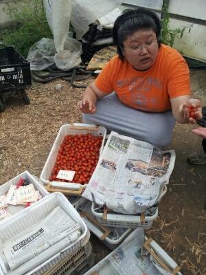 高知県まで『フルーツトマト』・・・視察へ行ってきました♪_b0077531_14121978.jpg