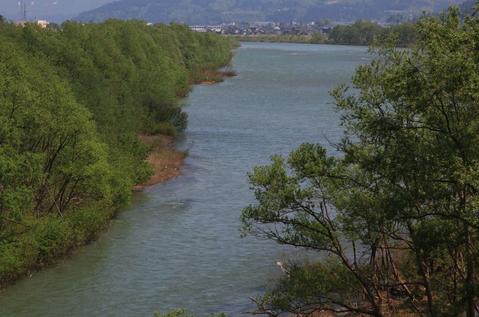 魚野川_e0150433_1630212.jpg