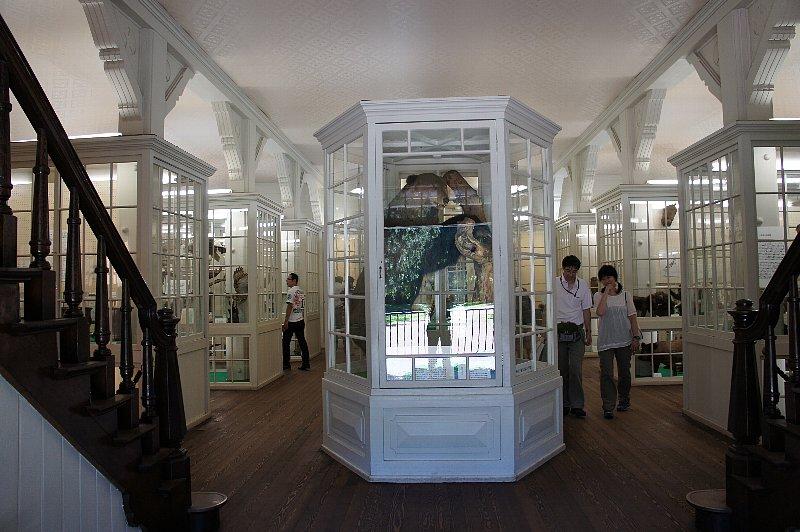 北海道大学農学部植物園 博物館本館_c0112559_13145592.jpg