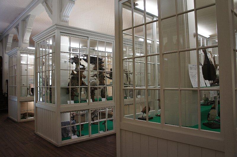 北海道大学農学部植物園 博物館本館_c0112559_13152368.jpg