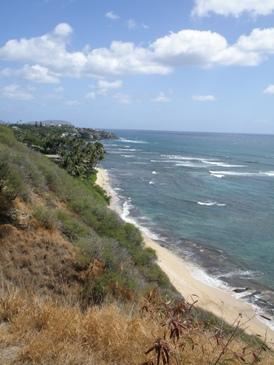 今更 ハワイ ⑤-Ⅱ_d0062076_1342132.jpg