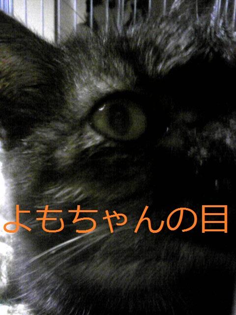 a0232197_2151084.jpg