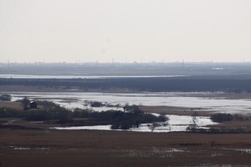 あふれる湿原  5月11日_f0113639_1114627.jpg