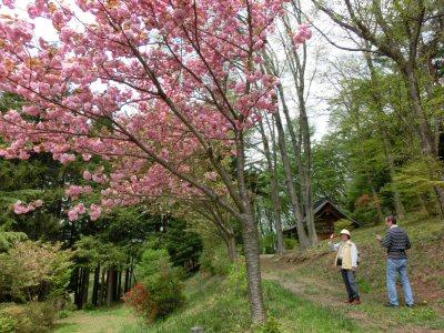 富士見町の湧水を訪ねて_f0019247_17584177.jpg