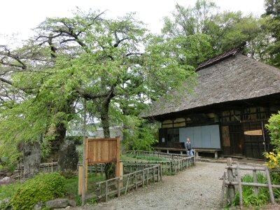 富士見町の湧水を訪ねて_f0019247_180254.jpg