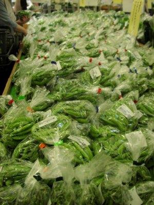 初夏の野菜が続々登場!_c0141652_18421982.jpg