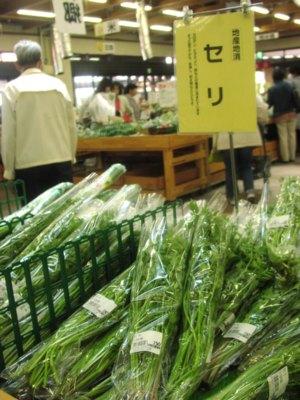 初夏の野菜が続々登場!_c0141652_18423684.jpg
