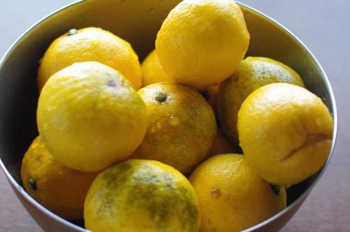 湯河原のニューサマーオレンジ(日向夏)でジャムを作る_c0110869_2149034.jpg