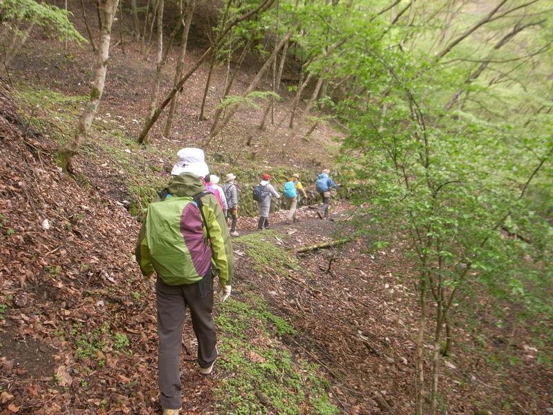 5月6日 野栗古道ハイキング 開催しました。が・・・_b0209774_1894168.jpg