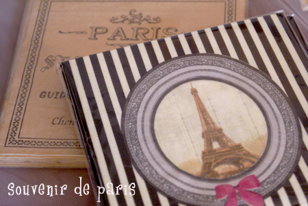 PARIS_b0132385_3253416.jpg