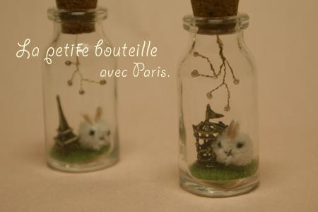 PARIS_b0132385_3291490.jpg