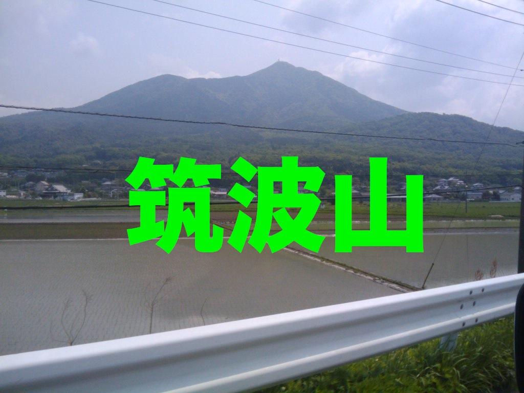 a0120192_16353037.jpg