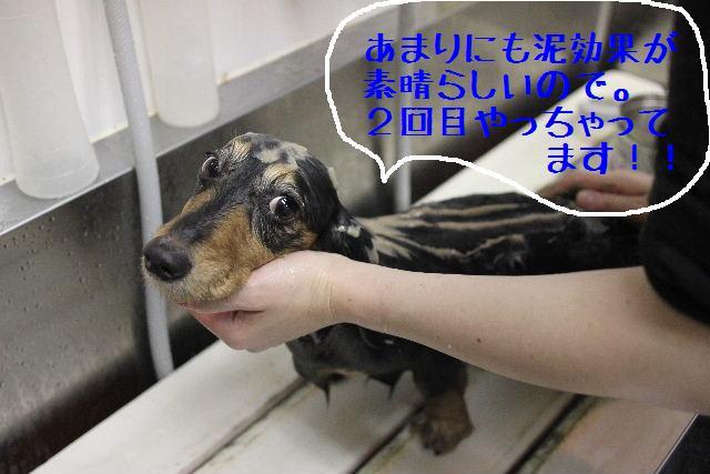 こんばんわぁ~!!_b0130018_2220091.jpg
