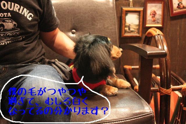 こんばんわぁ~!!_b0130018_22201369.jpg