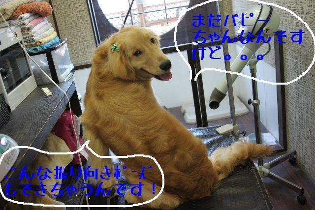 こんばんわぁ~!!_b0130018_2232879.jpg