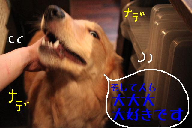 こんばんわぁ~!!_b0130018_2233233.jpg