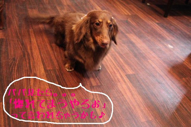 こんばんわぁ~!!_b0130018_225641.jpg
