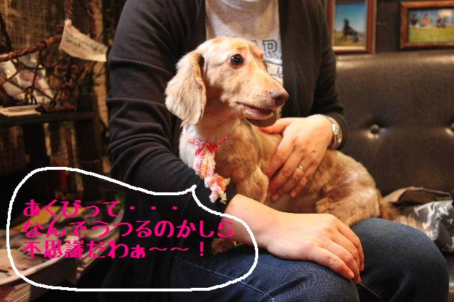 こんばんわぁ~!!_b0130018_2264414.jpg
