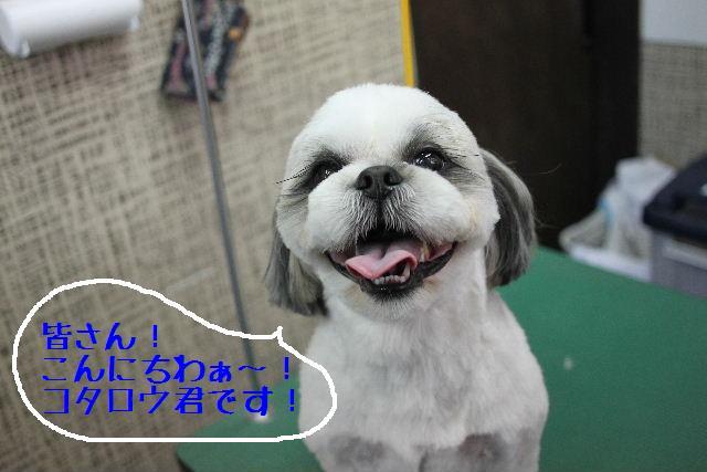こんばんわぁ~!!_b0130018_2275834.jpg