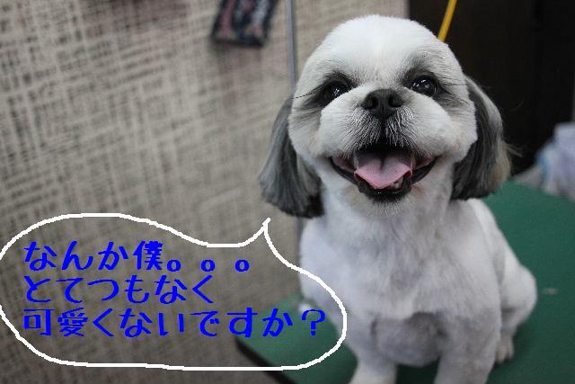 こんばんわぁ~!!_b0130018_228394.jpg