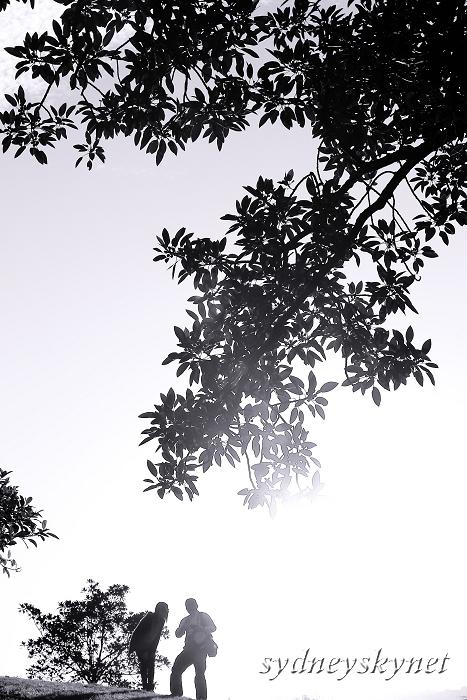 木漏れ日_f0084337_1938344.jpg