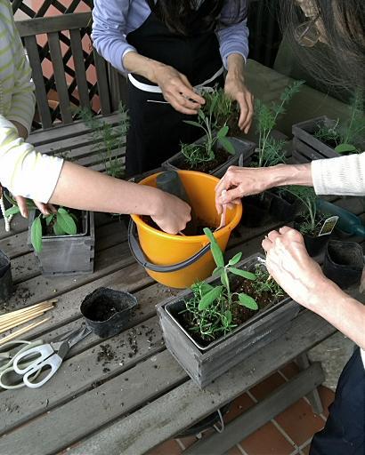 Fooding Gardening!_c0116778_14473383.jpg