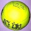上牧クラブOB 日本女子ソフトボールリーグに登場(5/12)_b0226723_4471686.jpg