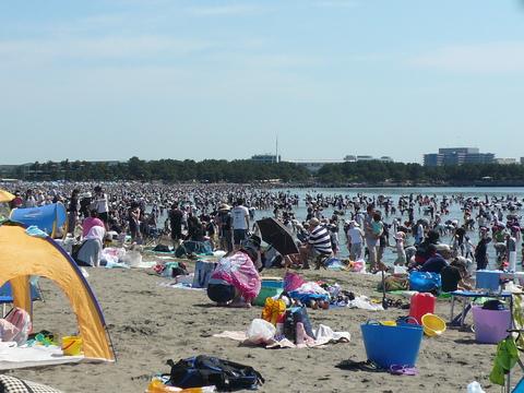 海の公園-潮干狩り_e0237625_0513695.jpg
