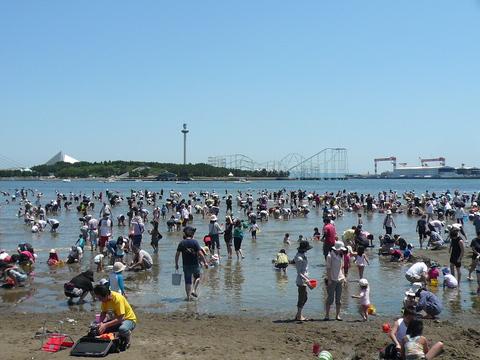 海の公園-潮干狩り_e0237625_0515258.jpg