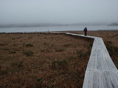 雄国沼で春を探してきました。_a0096989_17481525.jpg