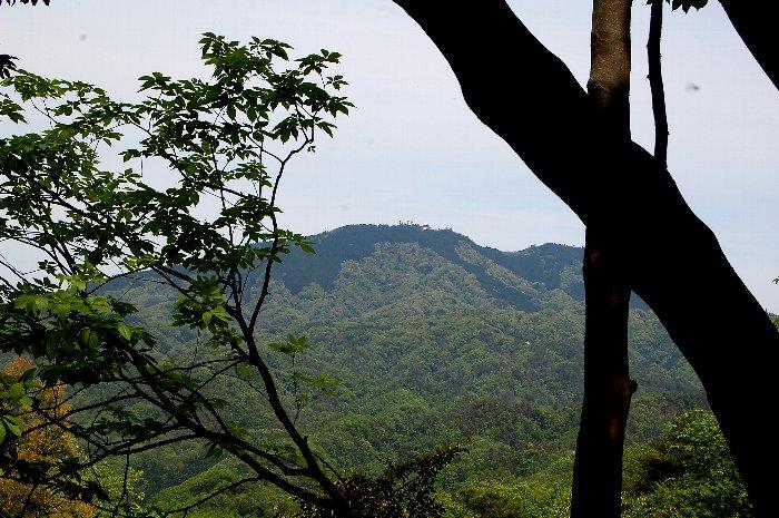 大文字山ハイキング_c0057390_21202770.jpg