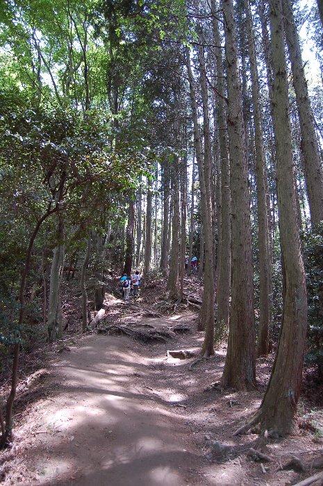 大文字山ハイキング_c0057390_21204394.jpg