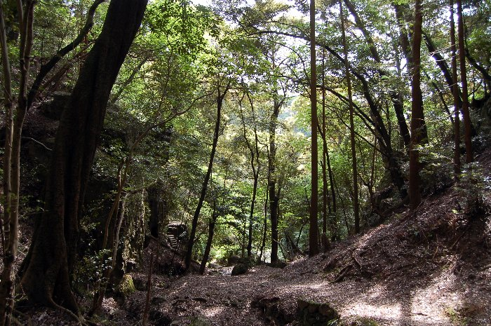 大文字山ハイキング_c0057390_21231046.jpg