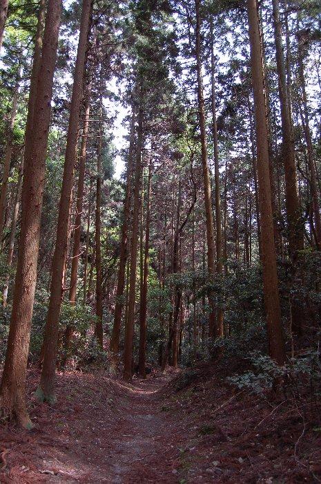 大文字山ハイキング_c0057390_2123270.jpg