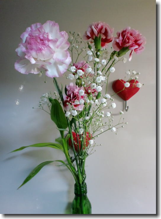 Mothers day☆_e0014000_0594999.jpg