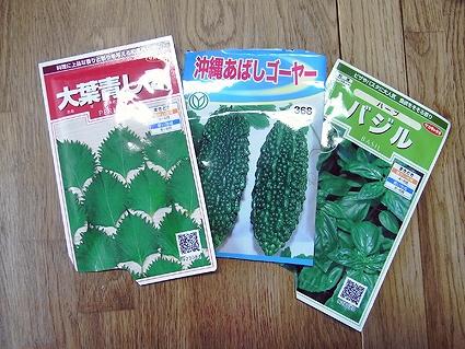 緑化の季節です_a0148909_13105750.jpg