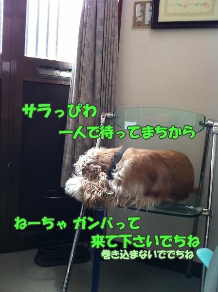 b0067012_17444695.jpg