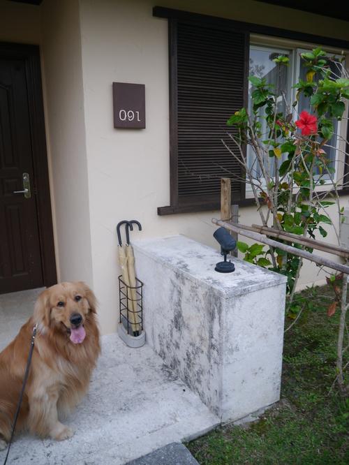 ルーカス、沖縄初旅行!_c0220025_0161295.jpg