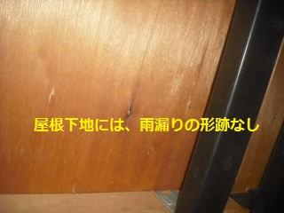 作業初日_f0031037_2111193.jpg
