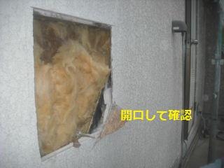 作業初日_f0031037_21124396.jpg
