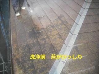 作業初日_f0031037_21152288.jpg