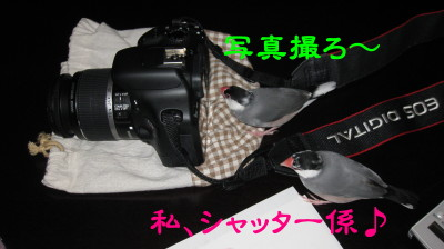 b0158061_22475277.jpg