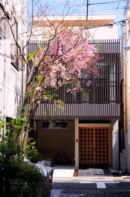 「浅草の家」外観・玄関_f0230666_11344774.jpg