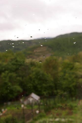 雨の日_f0106597_0435351.jpg