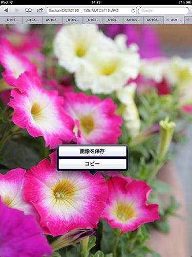 c0183200_014720.jpg