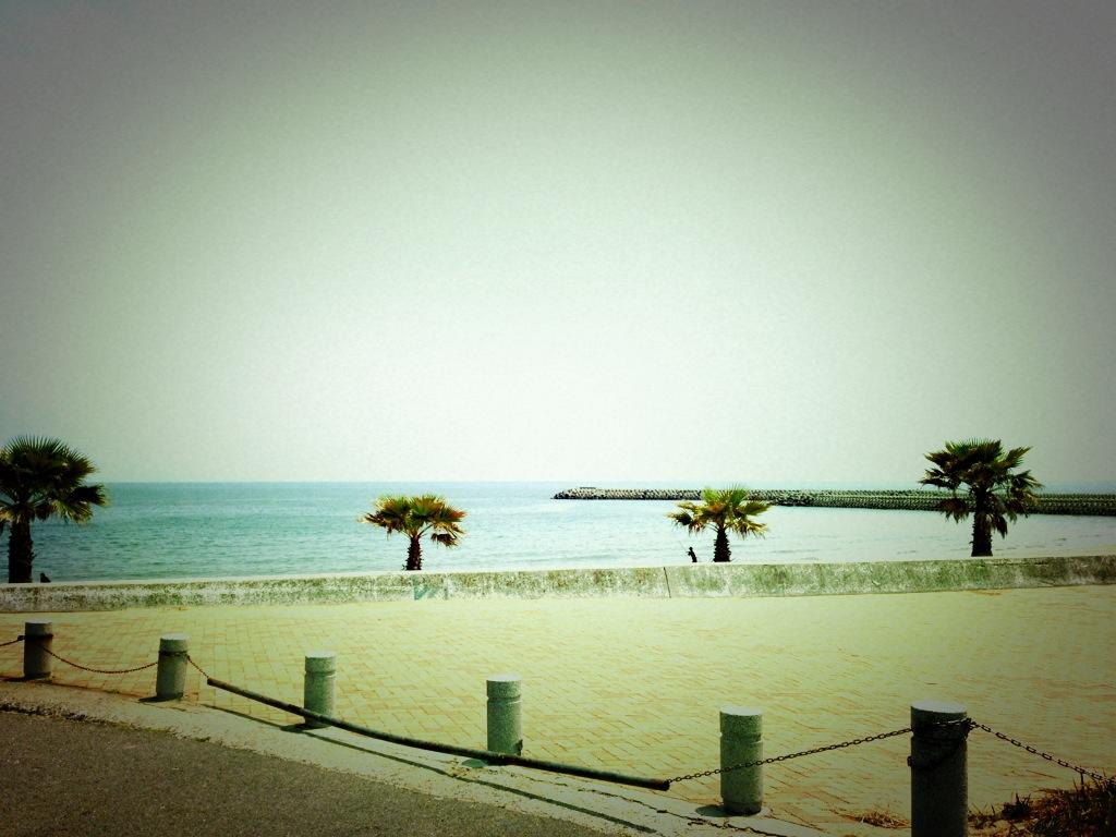 海の見えるヨガ^^_a0169811_5464299.jpg