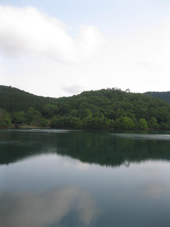 真緑な森で☆_a0125419_10584625.jpg