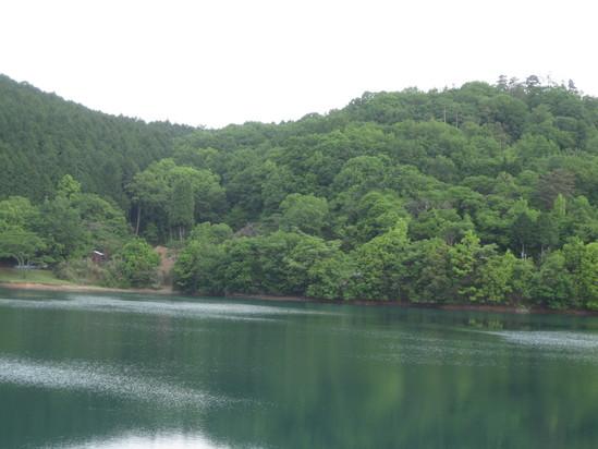 真緑な森で☆_a0125419_10591716.jpg