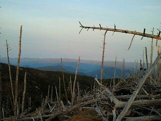 弥山登山2012.0512-13 その4_e0173350_10413640.jpg
